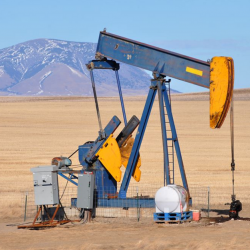 Oilfield Rentals Directory: Published